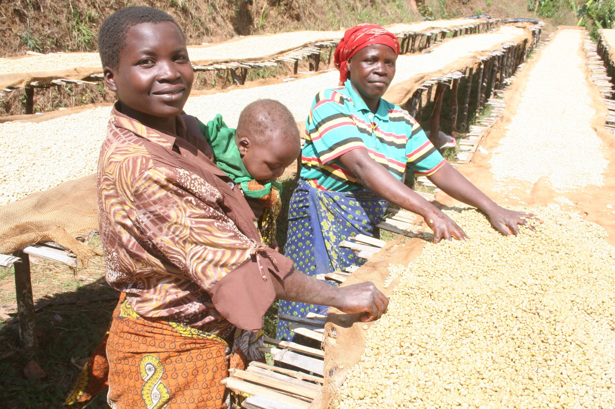 Received  help  from  Matthew  Algie  to  kickstart  a social  enterprise  selling  Malawian  mzuzu  coffee